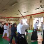 stage di aikido